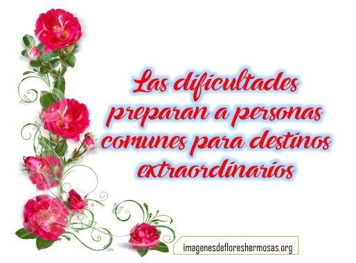 Imagenes De Rosas Con Frases Cortas Flores Hermosas Pinterest