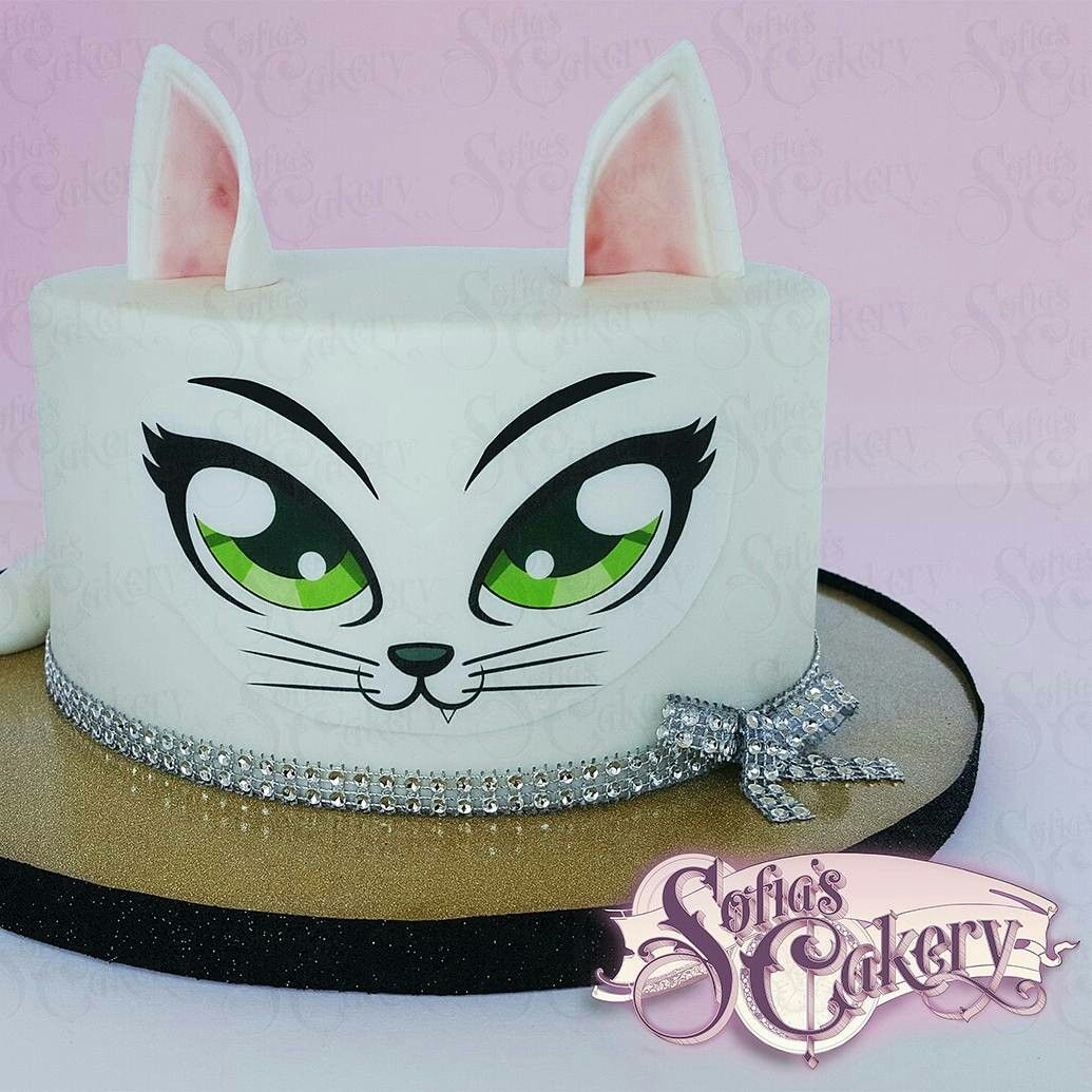 Diy Cat cake kit! Sofia's Cakery Find it on esty https