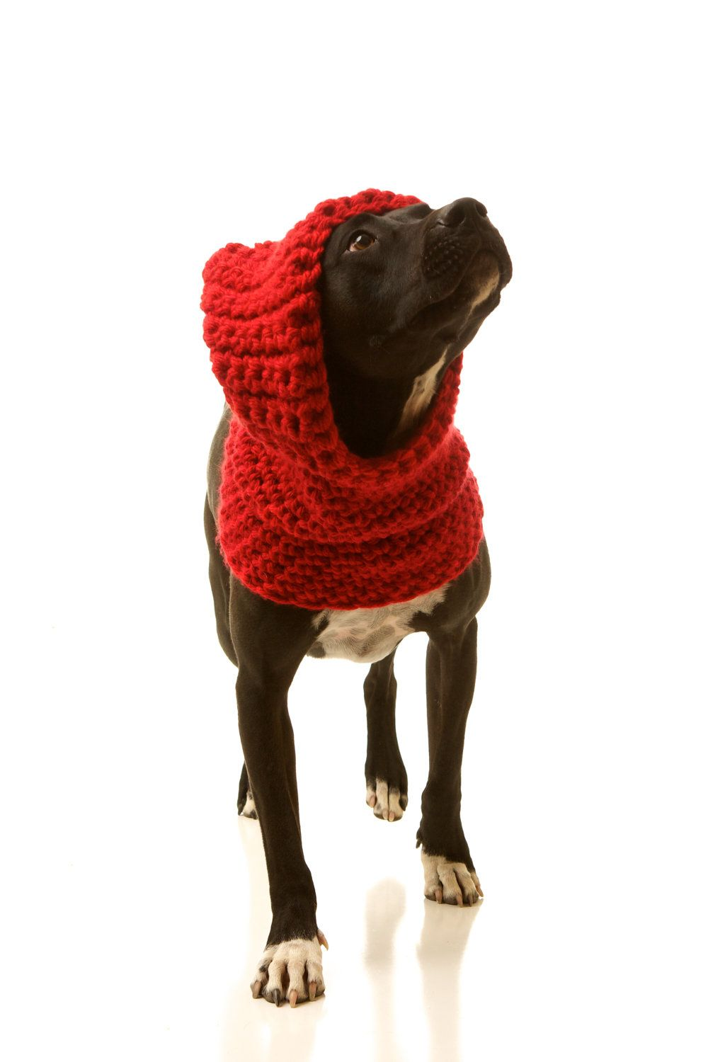 Hoodwinked Slouchy Hooded Dog Cowl: Cozy Dog Sweater Hoodie ...