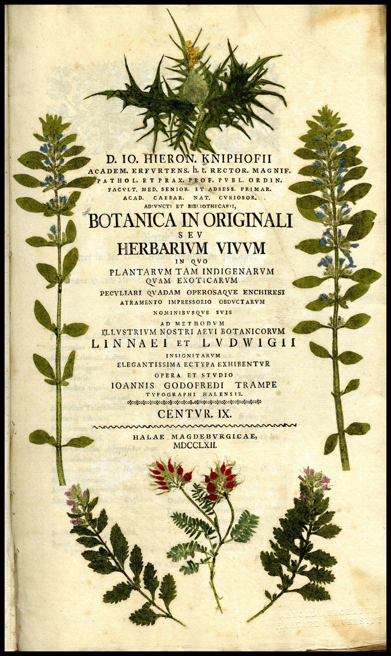Gray's Botanical text