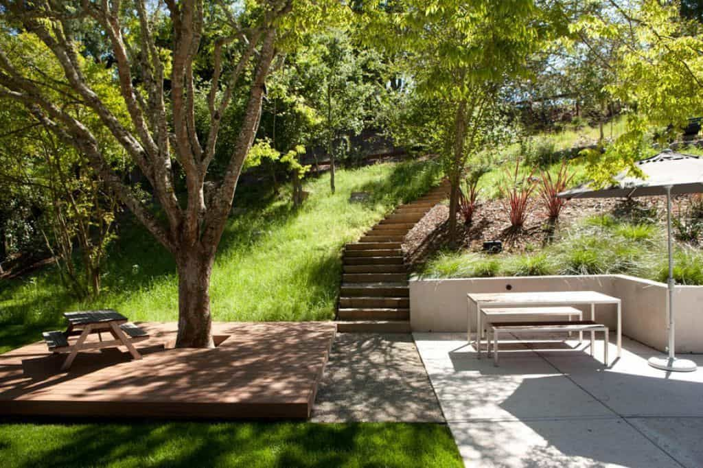 Outdoor Patio With Low Deck And Tree : Choosing The Best Patio Trees