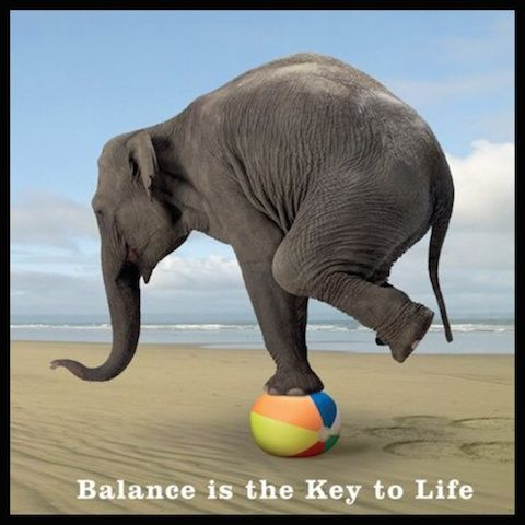 Do you need some balance in your life? Please check out my blog post! #inspiration #wellness #mindfull #healthylifestyle #balance #peace #sharicreates