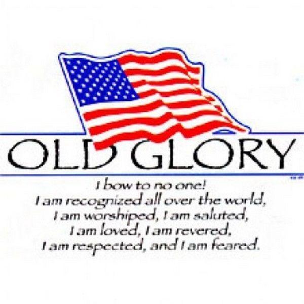 Patriotic Tshirt Old Glory American Flag Usa Freedom Liberty July 4th Pride Free Unbranded Graphictee Patriotic Tshirts Patriotic Old Glory
