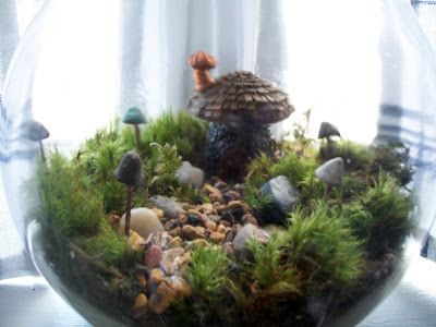 musings of a vintage junkie diy miniature fairy garden terrariums - Fairy Garden Terrarium