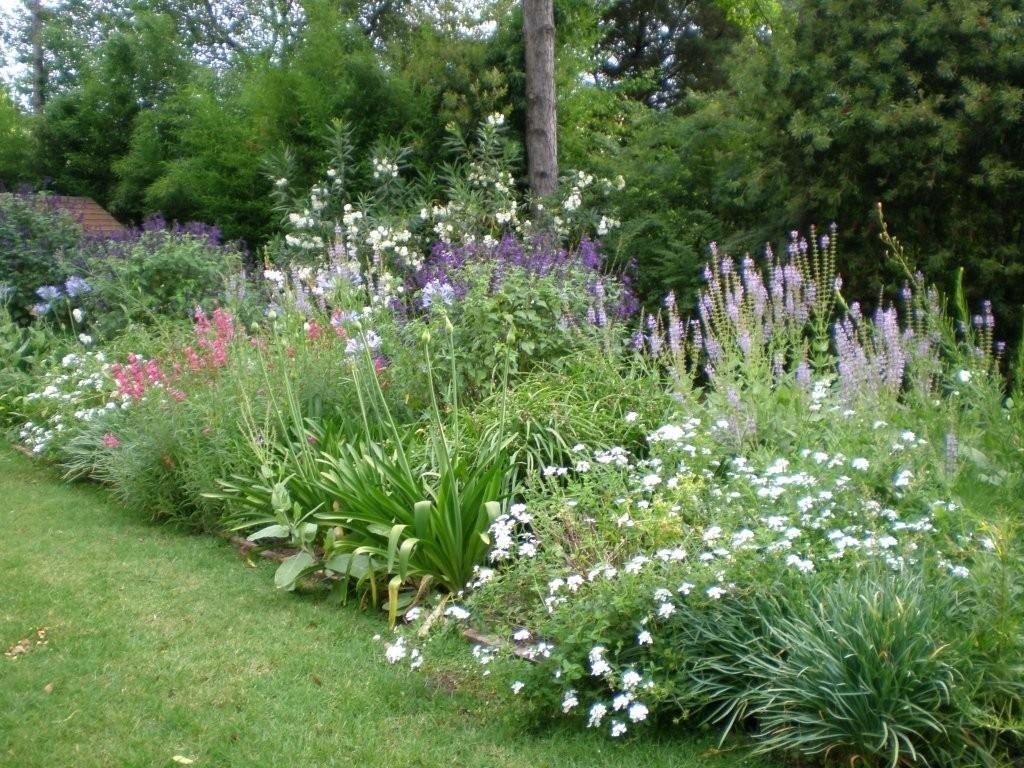 Cantero de herbaceas jardines canteros de flores - Arbustos perennes para jardin ...