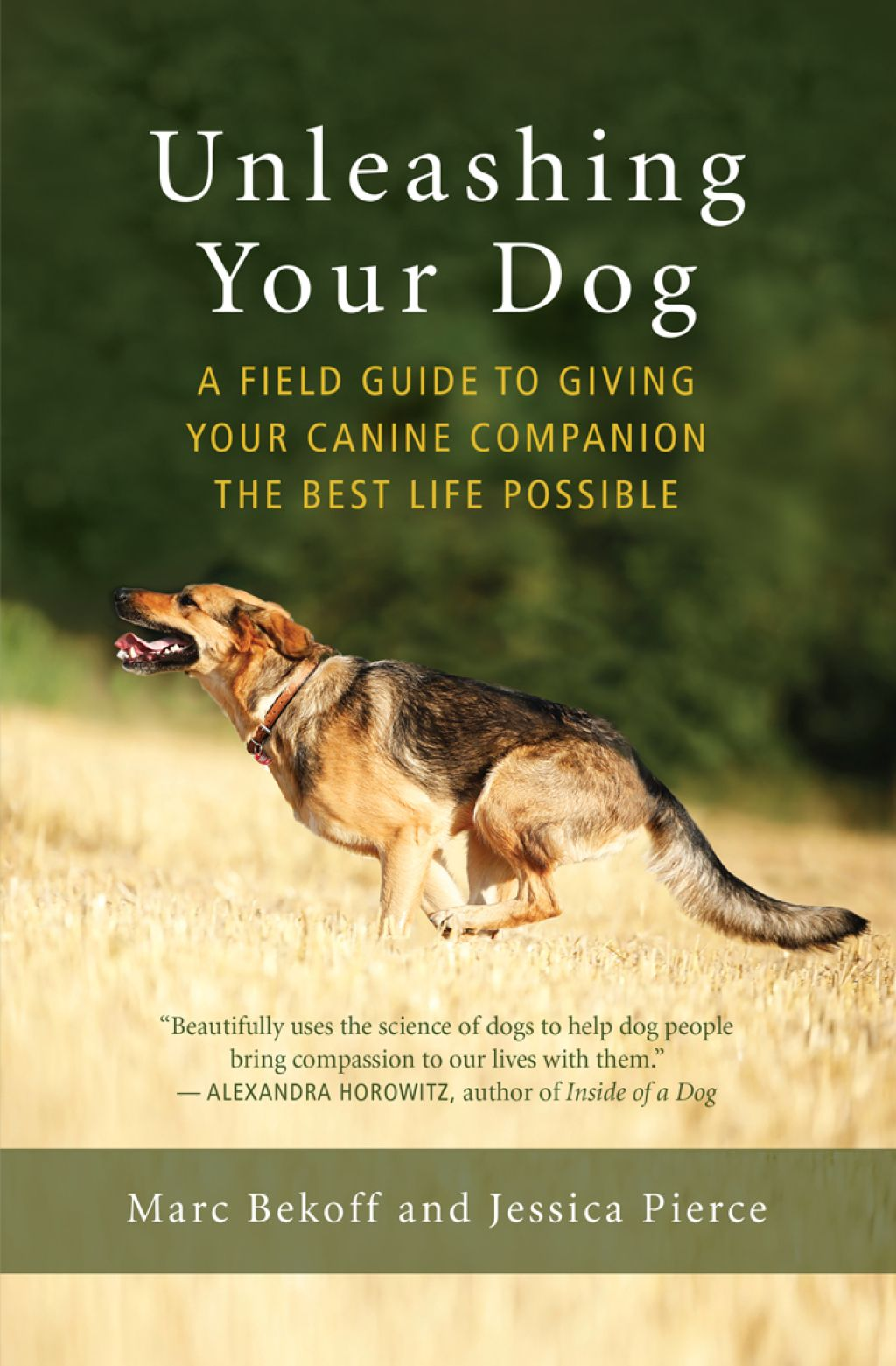 Unleashing Your Dog Ebook Aggressive Dog Dog Behavior Dog Lovers