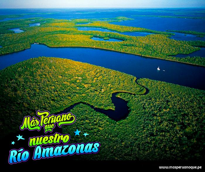 Masperuanoque Nuestro Rio Amazonas Y Sus Mas De Mil Afluentes Compartamos El Orgullo Por Nuestra Maravilla Natural Rio Amazonas Peru Arte Peruano