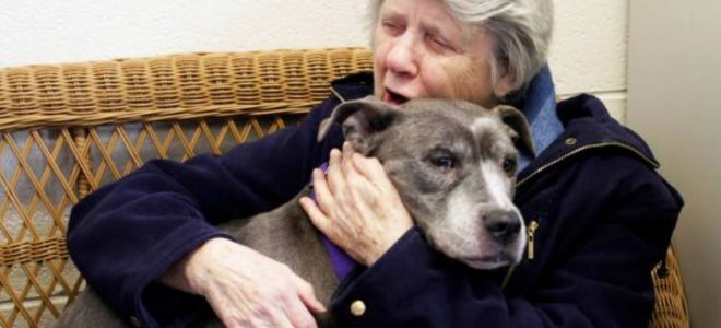 "These 3 Nuns Take In A Misunderstood Dog ""No One Else Wanted."""
