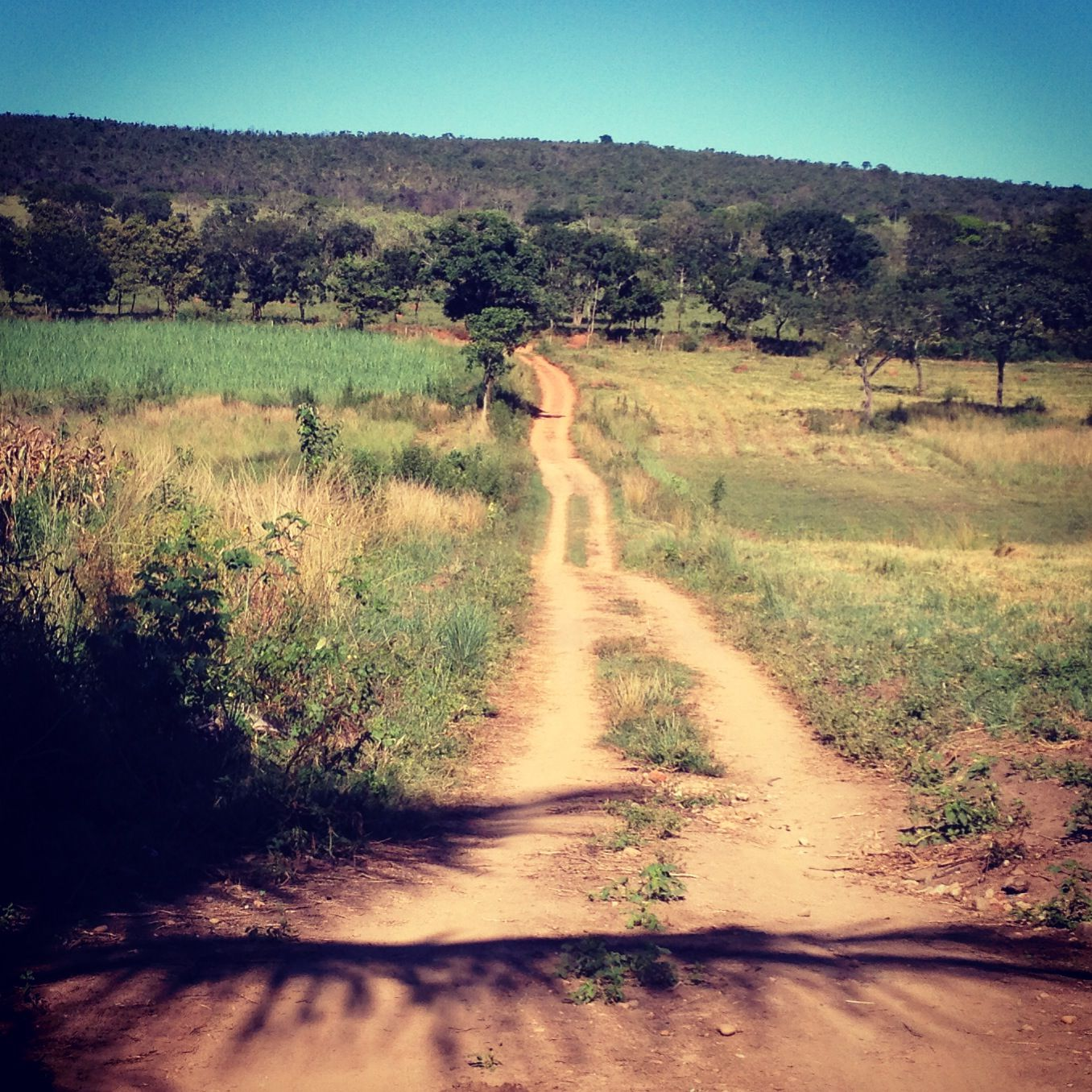 Fazenda Quati Minas Gerais Brasil Com Imagens Natureza
