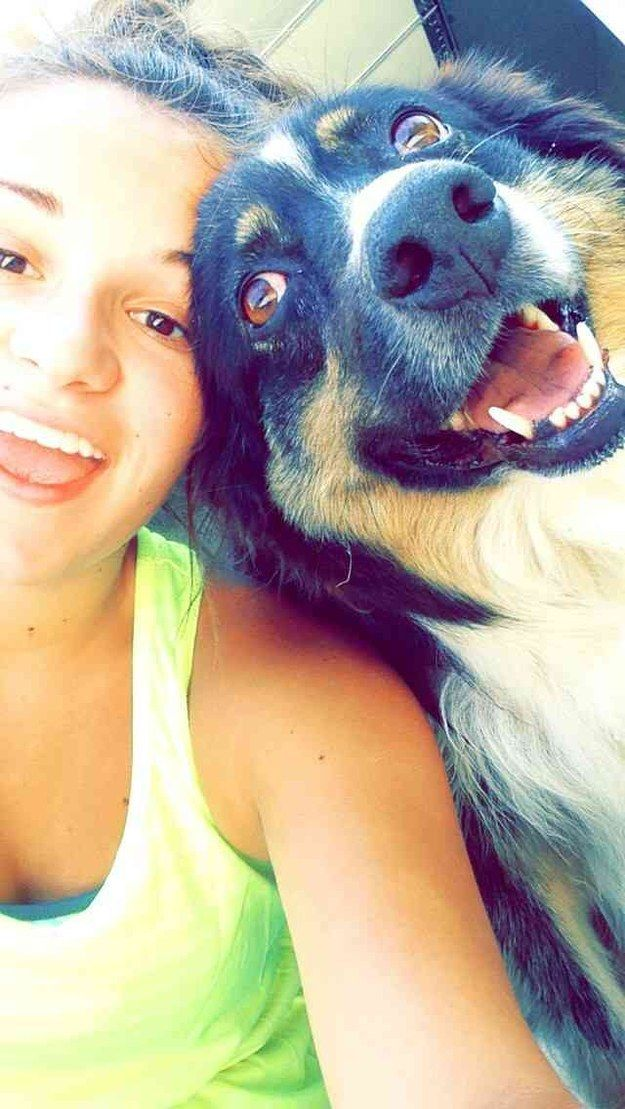 32 Dog Selfies That Changed The World In 2014 Cute Dogs Dogs Animals Beautiful
