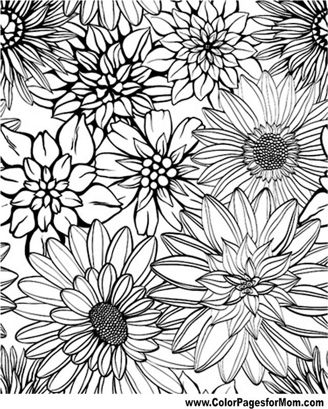 Flower Coloring Page 79 | Coloring Therapy | Pinterest | Flower ...
