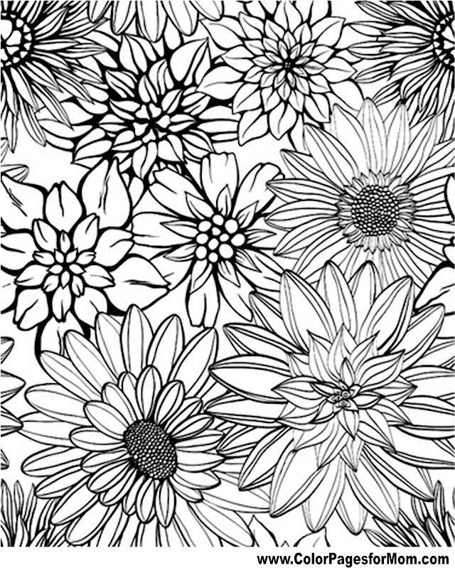 Pin On Kleurplaten Bloemen 2