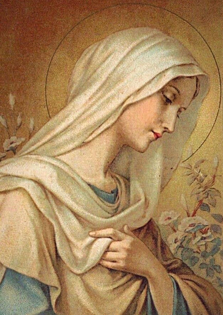 Pin by Giusy Cusumano on Virgen maría   Mother mary, Mary and jesus,  Blessed mother