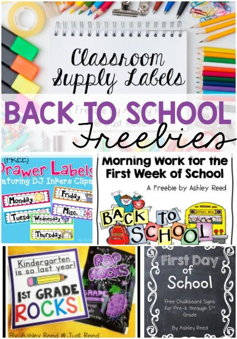 Back to school freebies to keep you organized, excited, and ready for a new year!  Pin this to  find it later!