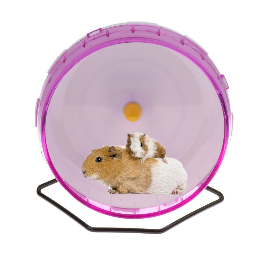 Pin Em Small Animal Exercise Wheels