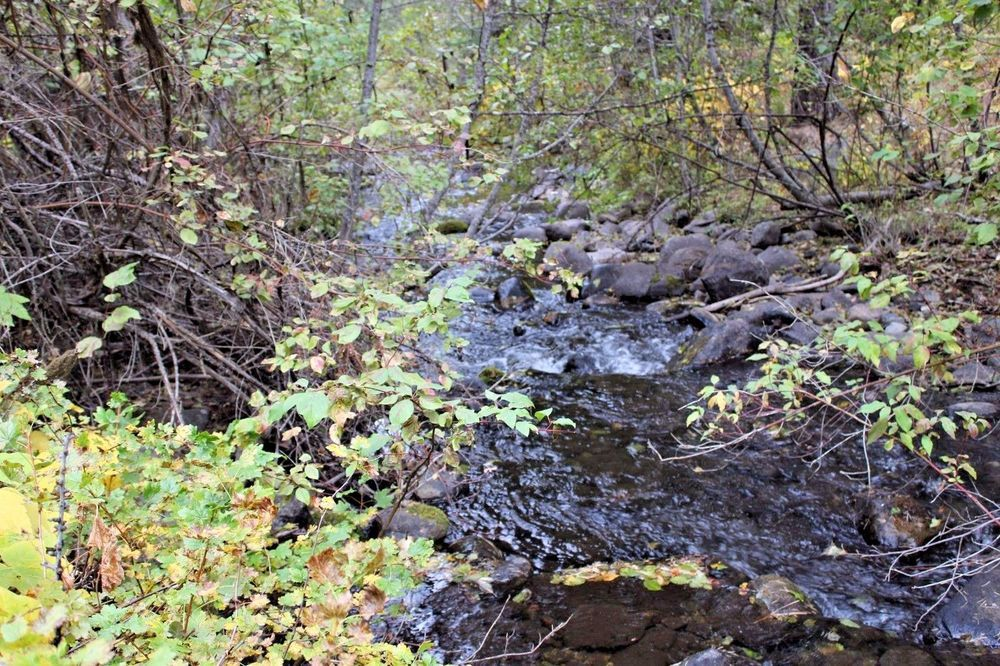 Gold mine 20 acre placer mining claim granite boulder creek grant oregon gold mine 20 acre placer mining claim granite boulder creek grant county sciox Image collections