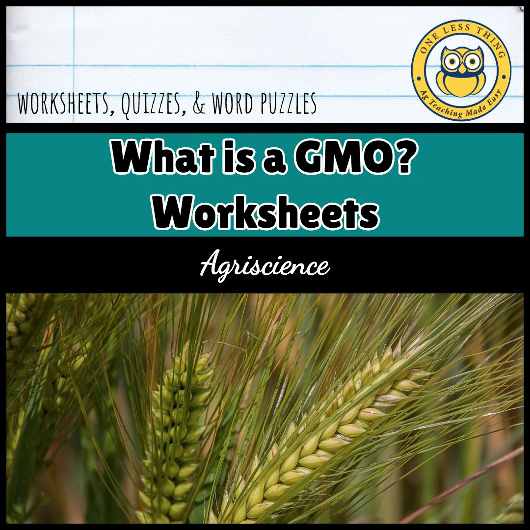 These worksheets cover the basics of Genetically Modified Organisms. They  review the basic science behind