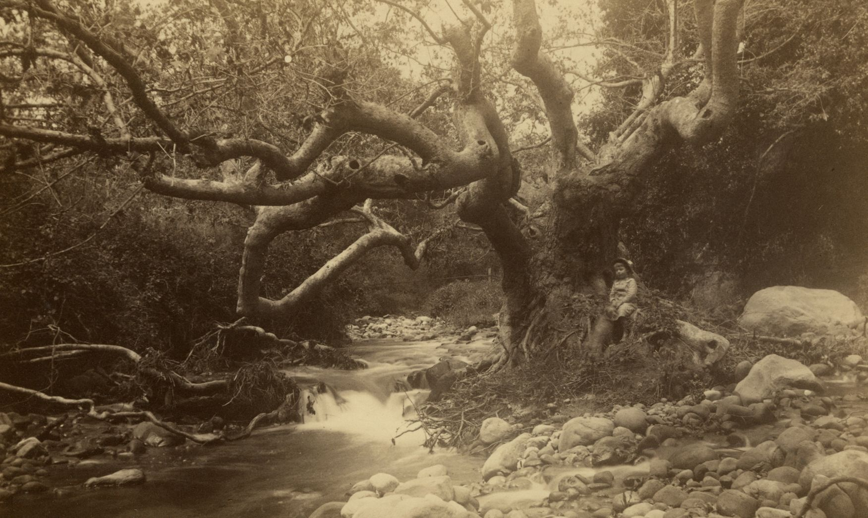 Mission Canyon, Santa Barbara, California, Archives of the ...