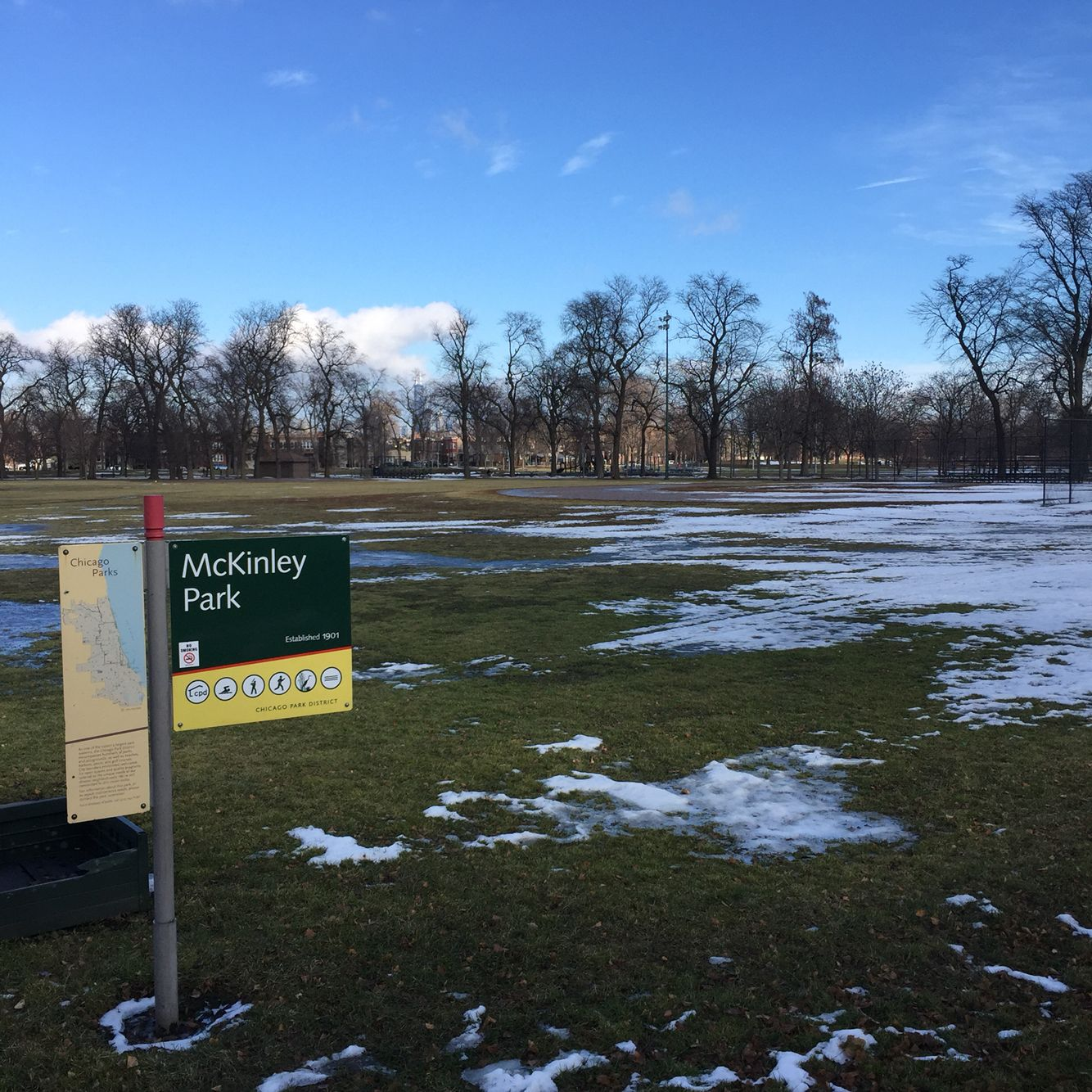 19/365 #mckinleypark is finally thawing out! Can't wait for spring in #Chicago #project365 #19