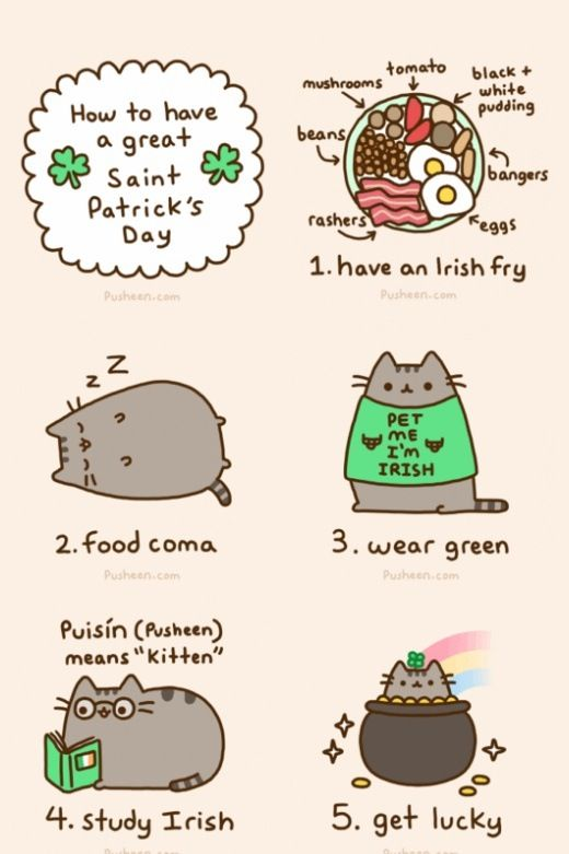 How to have a great Saint Patrick\'s Day   happy   Pinterest   Gato ...