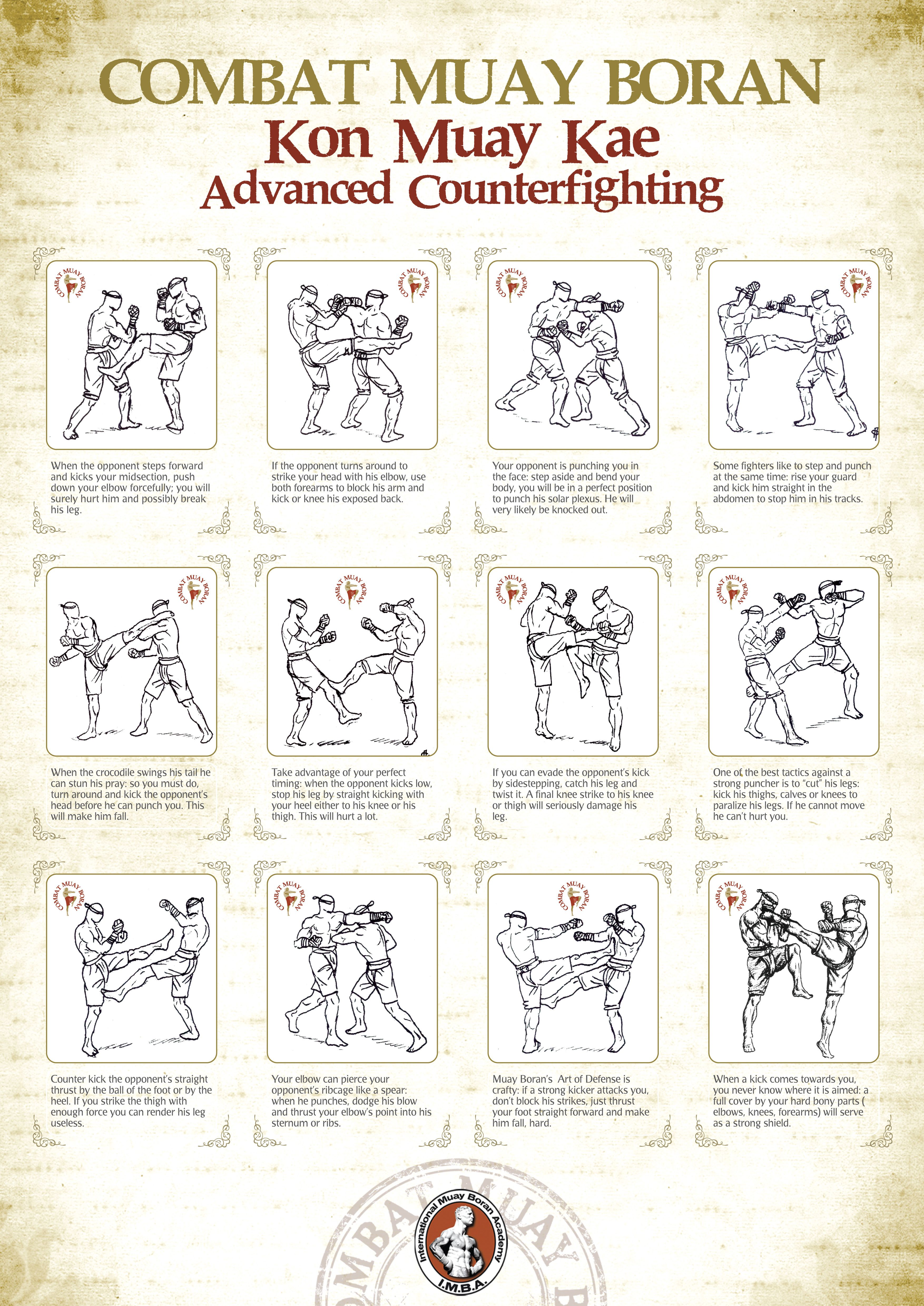 Combat Muay Boran Poster Imba Martial Arts Techniques Self Defense Martial Arts Martial Arts Workout