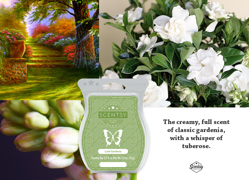 Lush Gardenia Scentsy Floral Spring Summer 2019 With Images