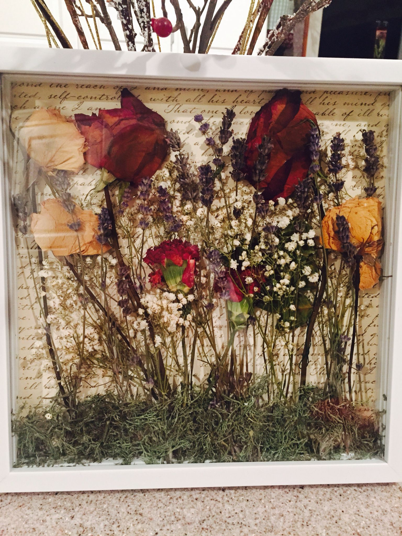 Dried flowers in a 12 x 12 shadow box from Michael\'s. Reindeer moss ...