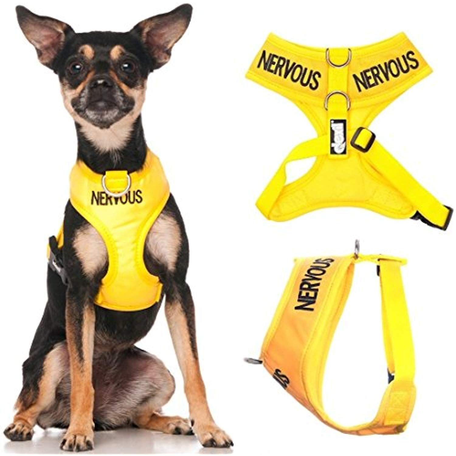 Nervous Give Me Space Yellow Color Coded Non Pull Front And Back