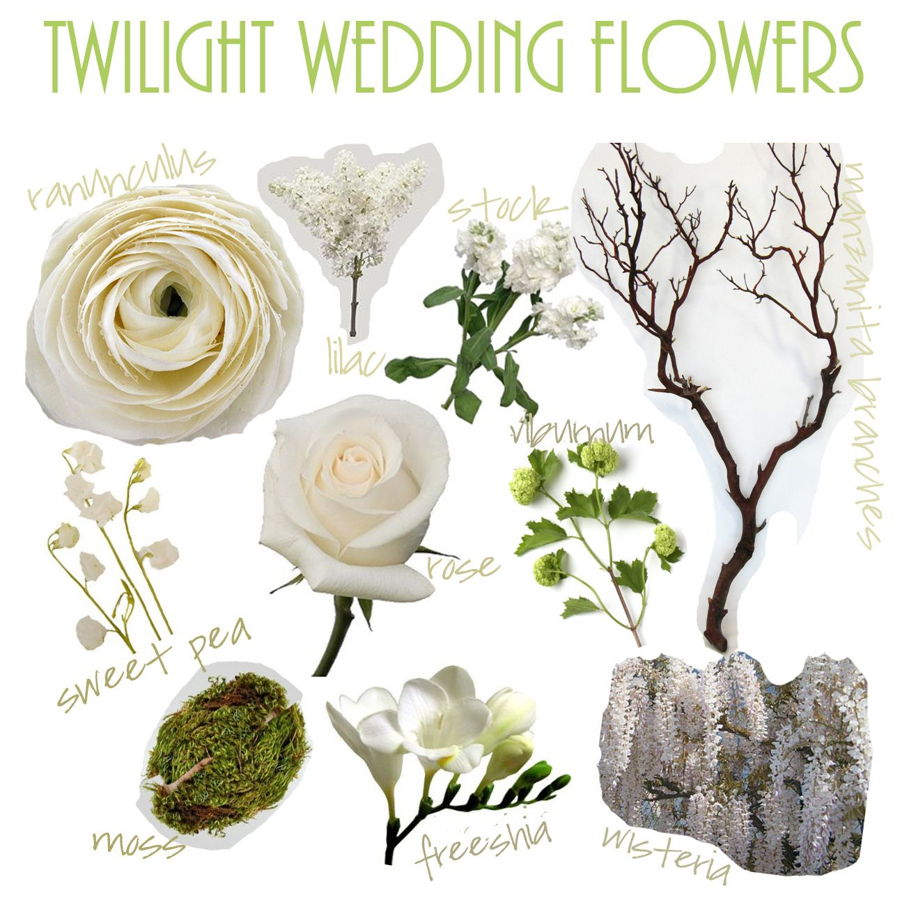 White Wedding Flowers Names Twilight Wedding Flowers Tyin The