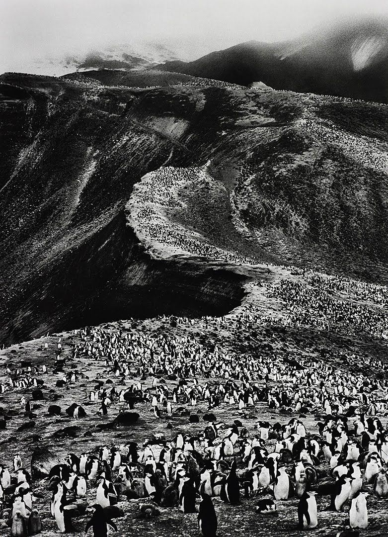 Deception Island, Antarctica. Photo by Sebastiao Salgado. 2005. follow http://pinterest.com/ahaishopping/