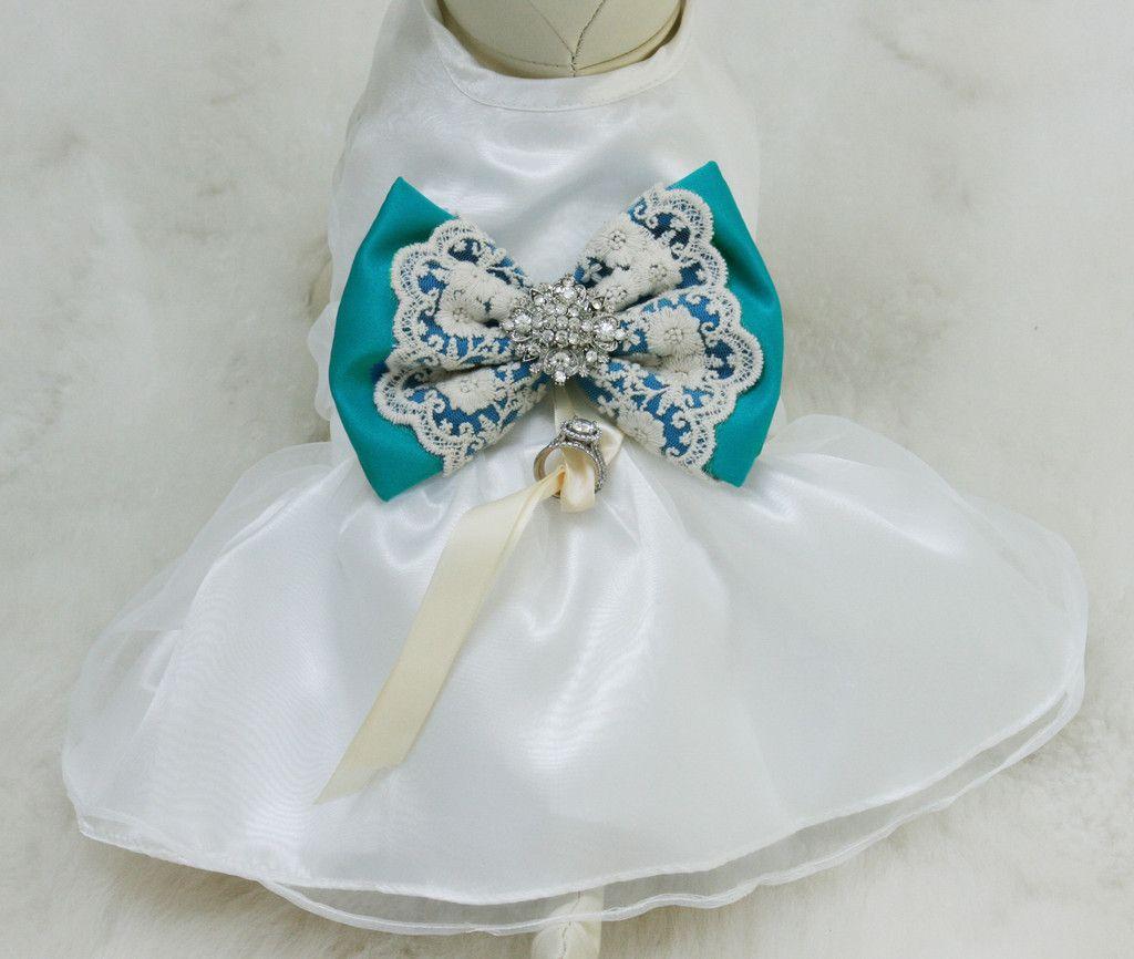 Turquoise Lace Dog dress, Dog ring bearer, Turquoise pet Wedding ...