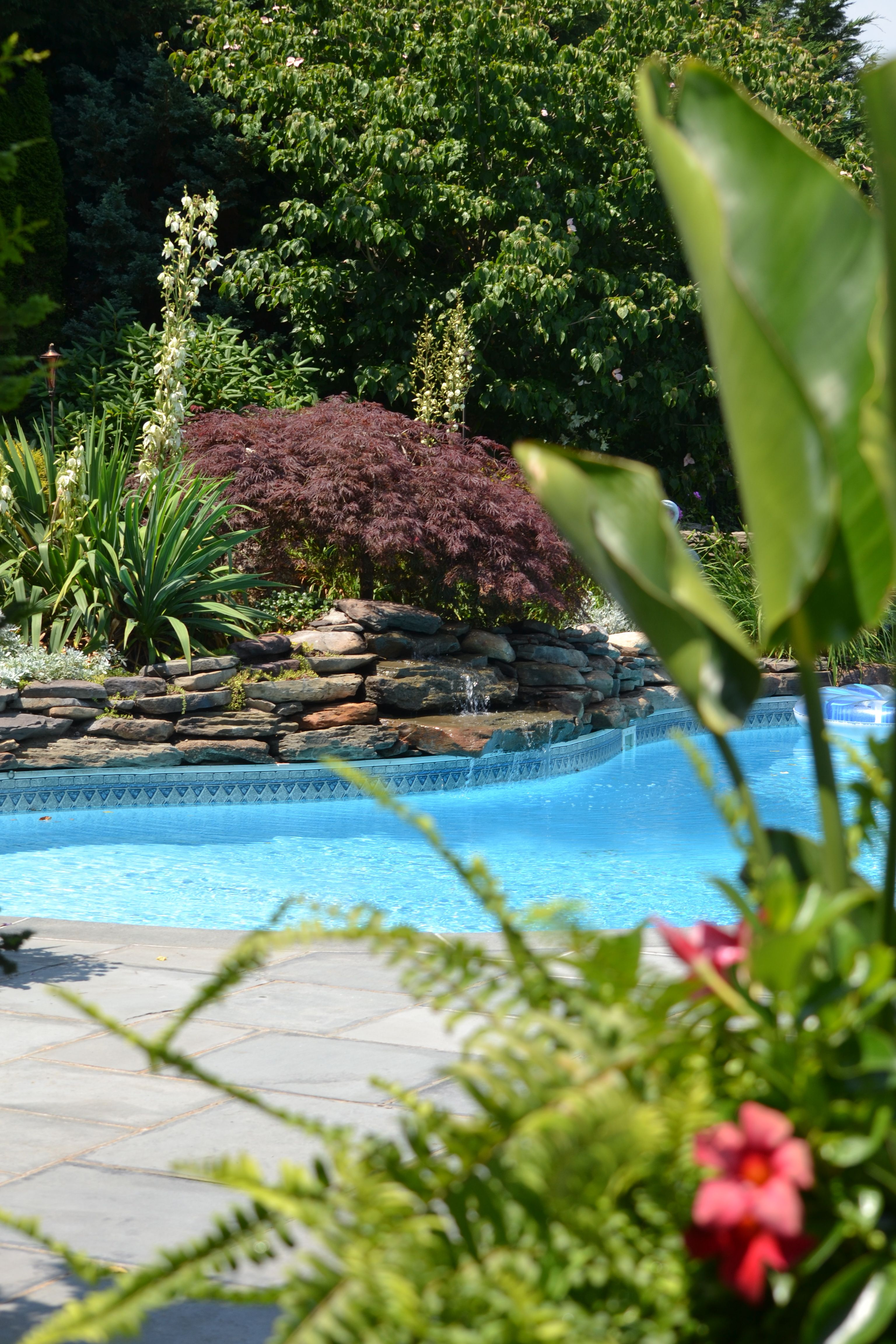 Tropical pool landscaping pinterest for Tropical pools