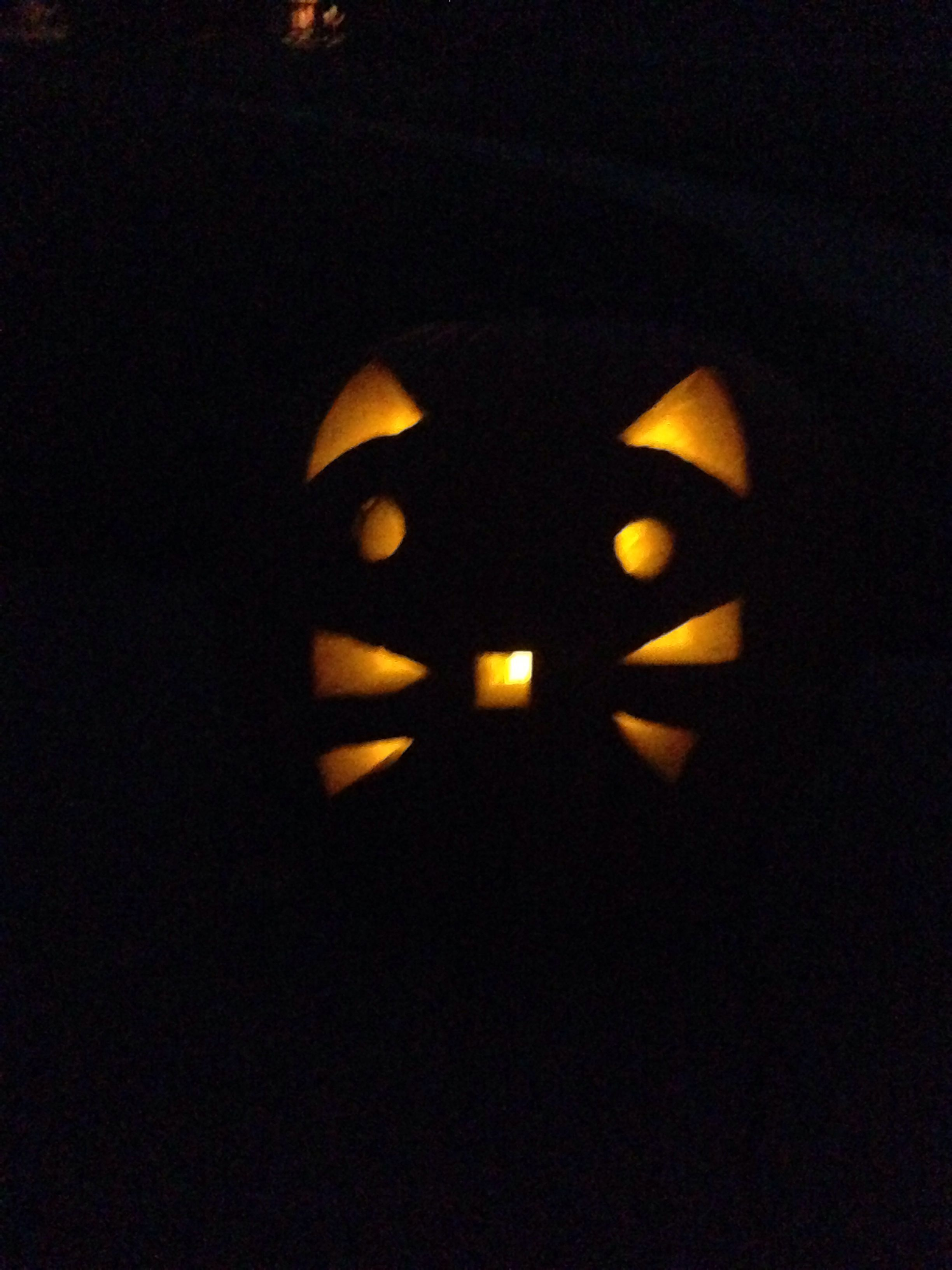 Carved pumpkin with kitty cat face halloween fall pinterest