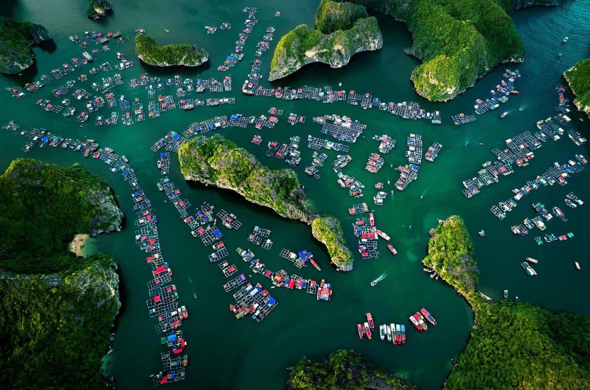 What You MUST do on Cat Ba Island, Vietnam Brown Eyed