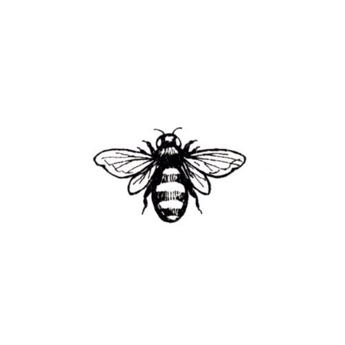 Photo of Bees are known for their fierce loyalty to a common cause. The most common words…
