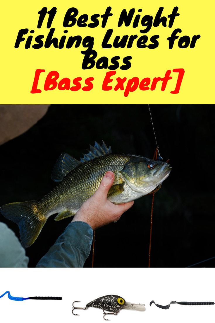11 Best Night Fishing Lures For Bass 2019 Night Fishing Fishing Lures Bass Lures