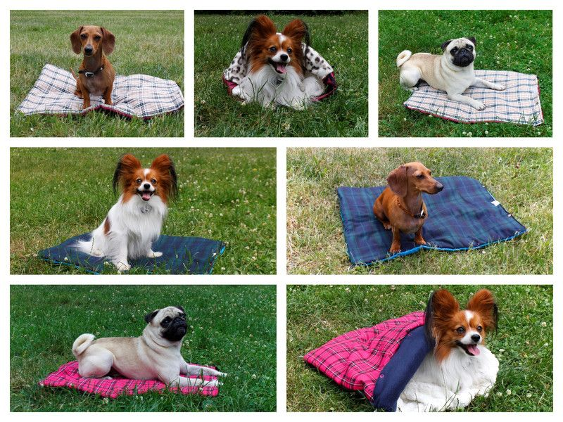 Hund: Decken - Anfertigung Größe S - funktionale Hundedecke - ein Designerstück von Perro-Paolo bei DaWanda