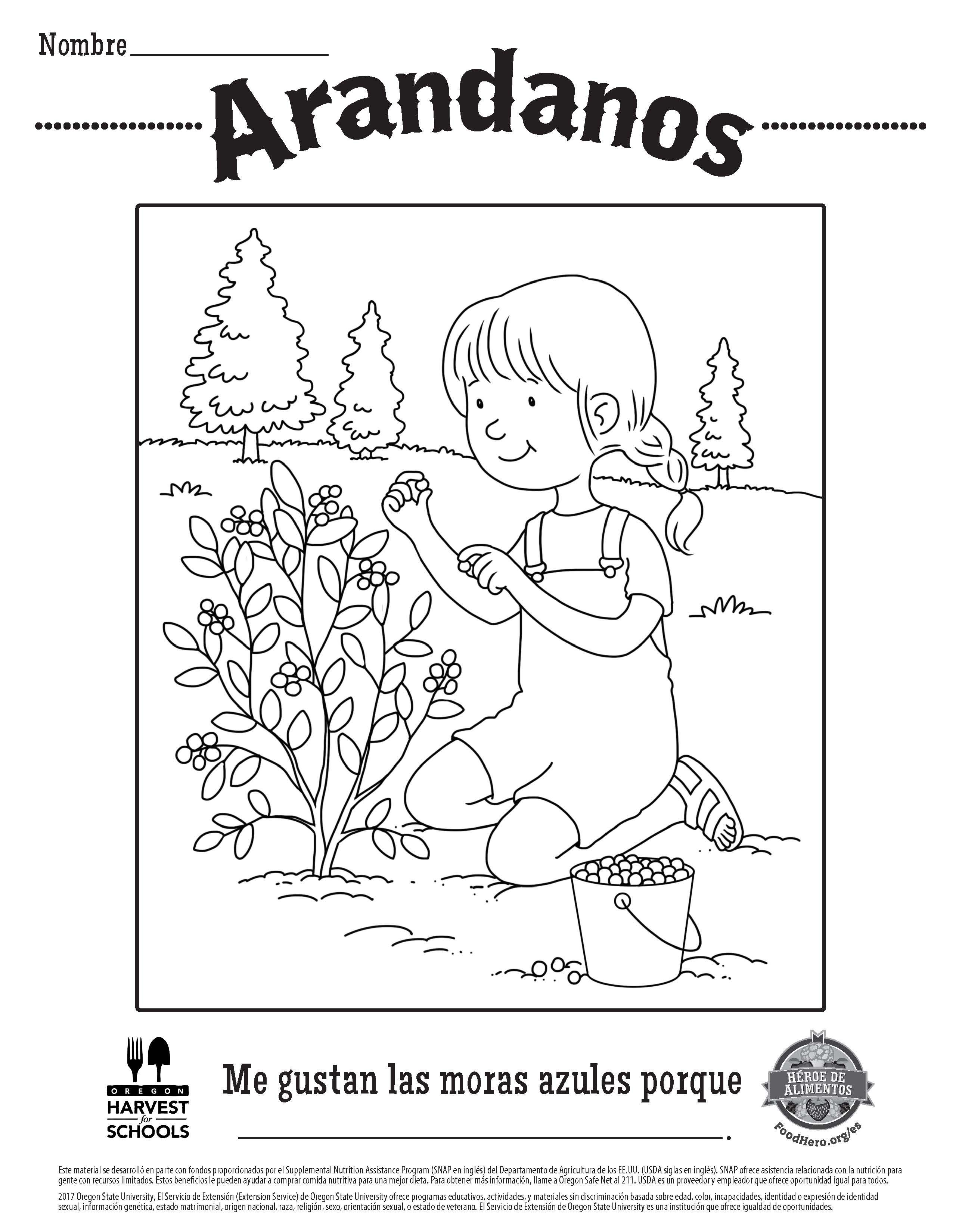 Blueberry free printable childrens coloring sheet food hero in spanish coloringpage