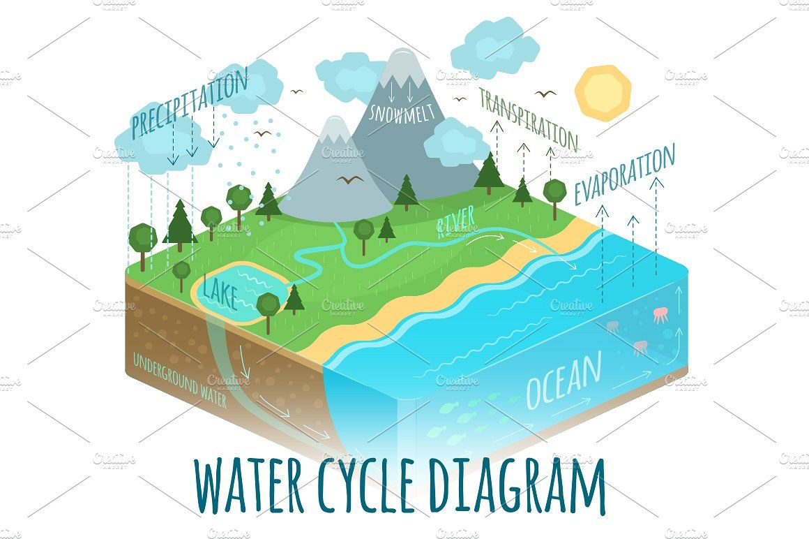 hight resolution of water cycle diagram by natalka dmitrova on creativemarket