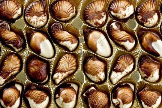 Bildergebnis für belgien schokolade