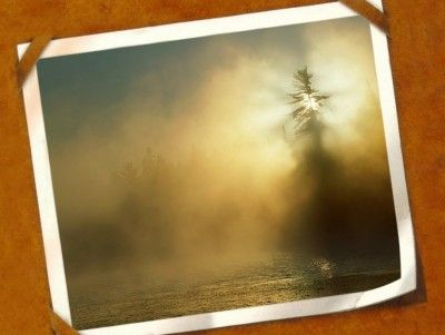 vintage nature cards frame ppt backgrounds nature card background vintage background www pinterest ph
