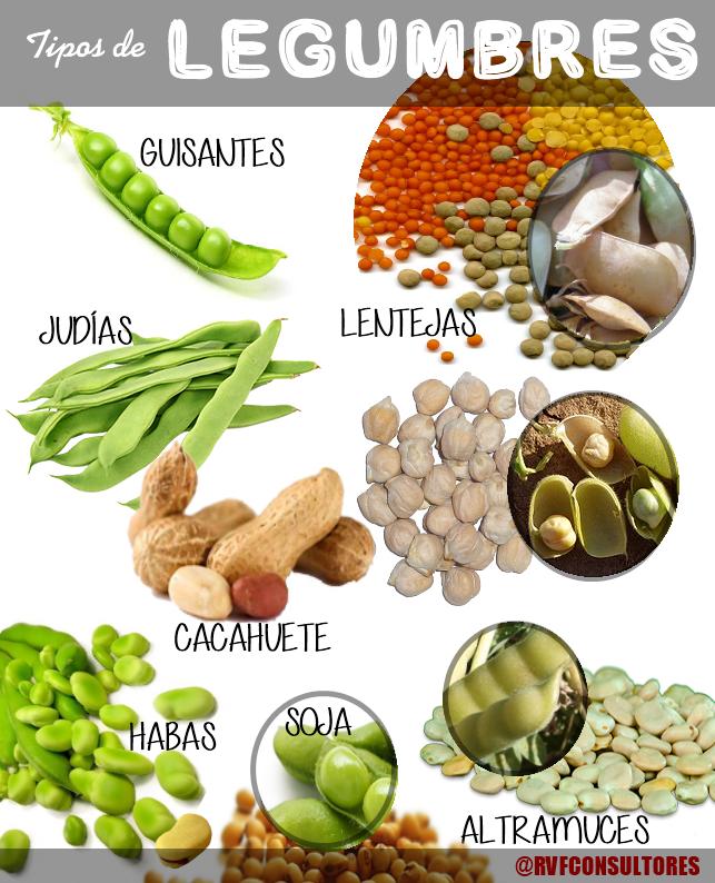 No confundamos legumbres cereales salvado semillas y - Hacer menestra de verduras ...
