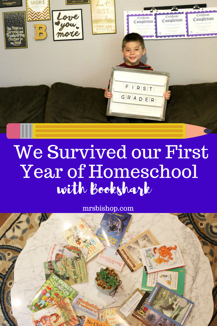 We Survived Our First Year Of Homeschool
