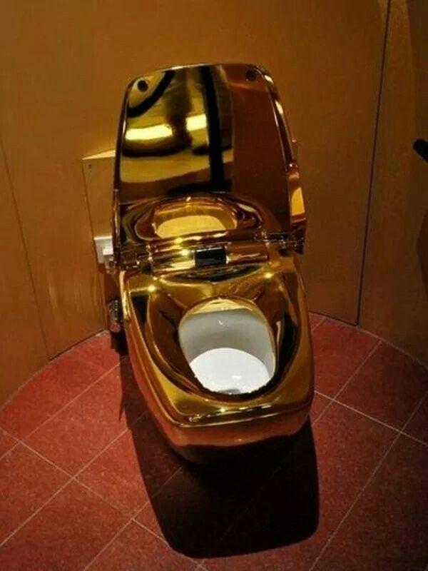 gold toilet. Gold toilet  tM DeluXe Toilets Pinterest Toilet