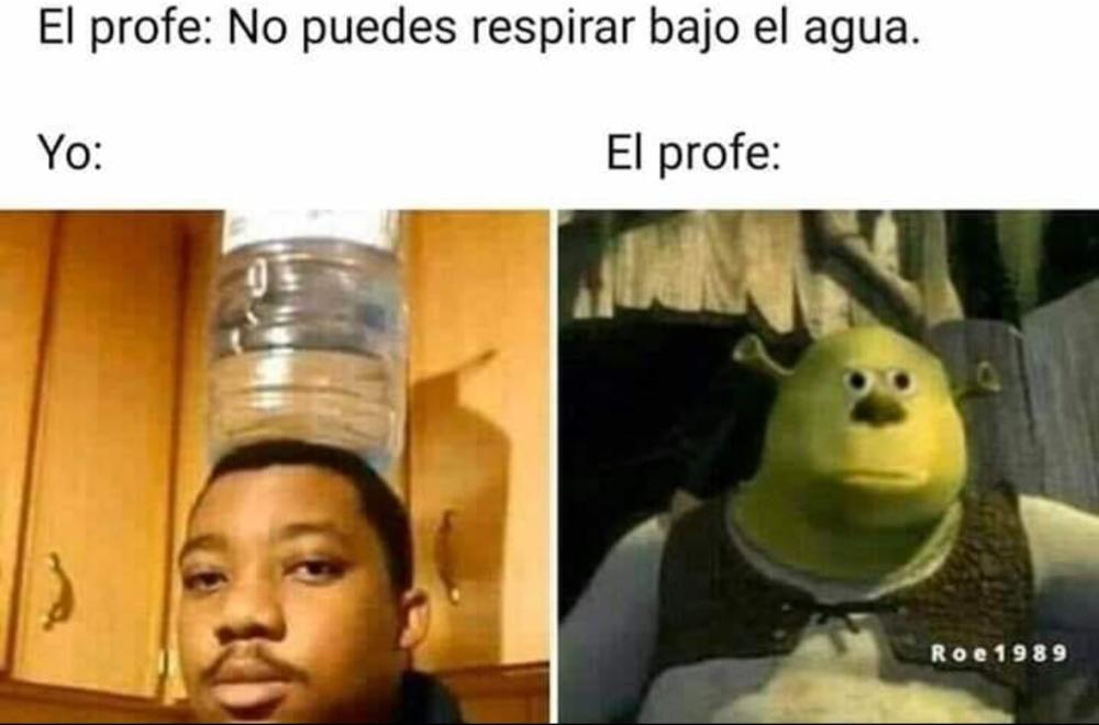 Memes Del Dia Memes Meme Del Dia Humor En Espanol
