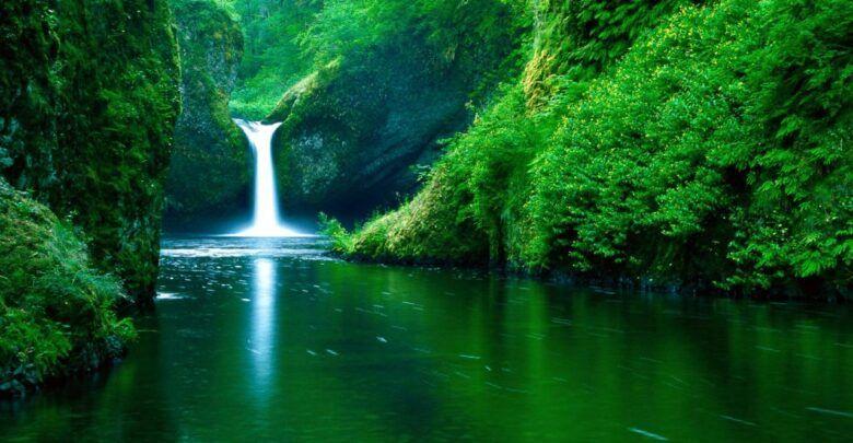 اجمل خلق الله تعالى في الكون مخلوقات رائعة سبحان الله Nature Images Cool Backgrounds Wallpapers Desktop Background Images