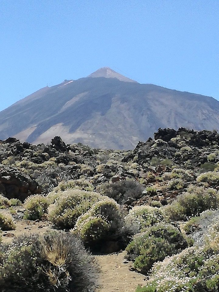 Hiking in Tenerife: a new perspective on Spain - Telegraph