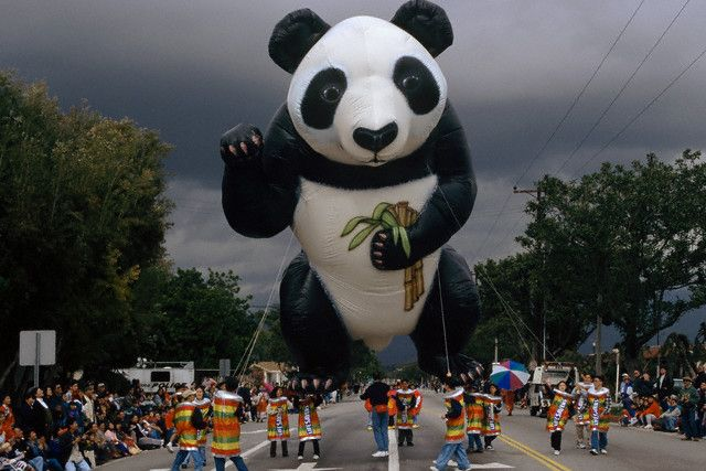 big big panda