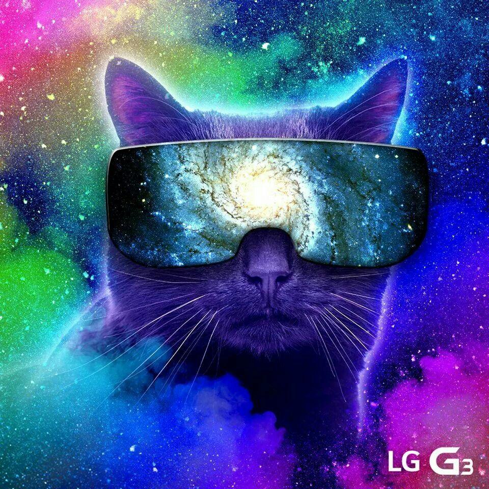 Space Cat Colorful Background Disney Fond Ecran Disney Chat