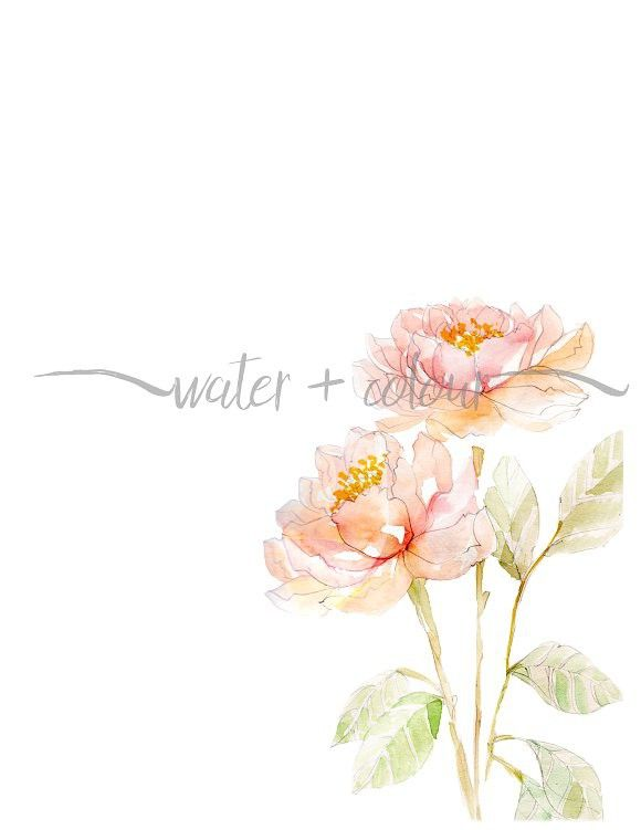 Floral Corner Border Watercolor Flowers